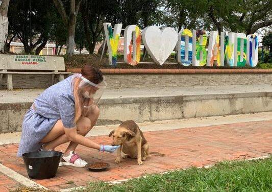 #SalvandoHuellas, una campaña por los animales en condiciones vulnerables